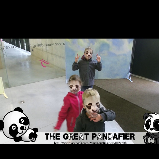 icon-panda
